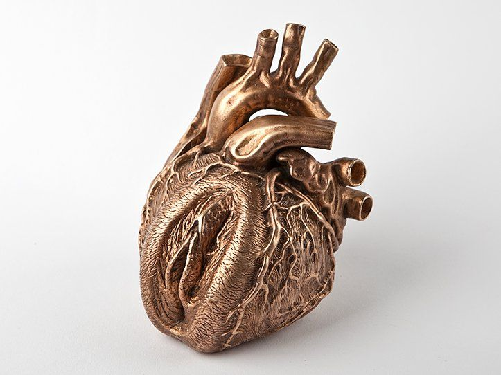 c15ce2c40d26ea01df49d60fb222d0c2--anatomical-heart-heart-of-gold